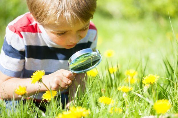 экологическая викторина для малышей